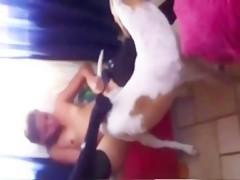 Intimando con su perro