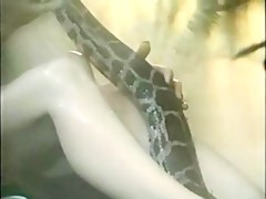 Recopilación de squirt