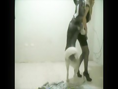 Getting her ass rimmed by a dog