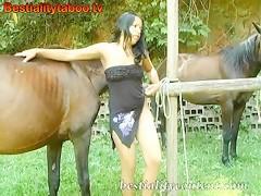 Horse Natasha 001